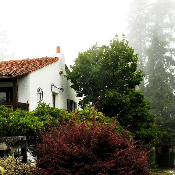 GARDEN RESTORATION   Home